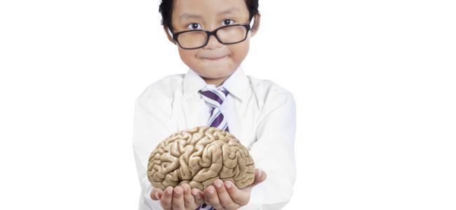 El segundo cerebro en niños y adultos: el estómago