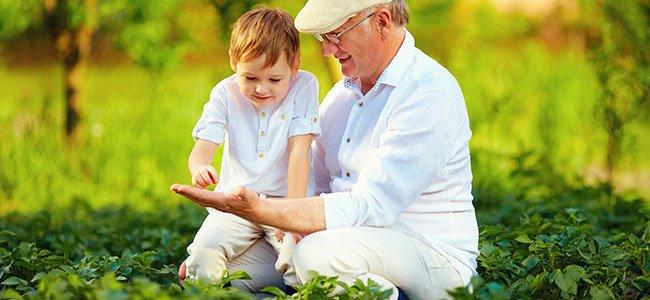 Nietos que crecen con sus abuelos son más felices