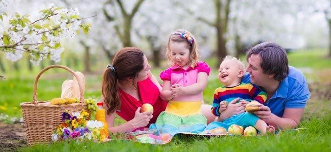 Familia come picnic