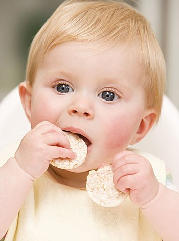 Los bebés deben ingerir 1.000 calorías al día
