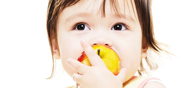 Bebe comiendo manzana