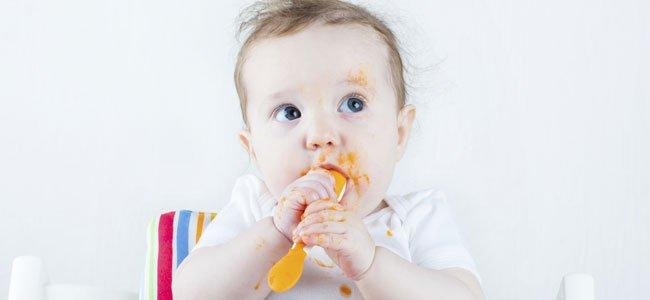 Pures bebes 6 meses fabulous receta de pur de calabacn zanahoria y patata para bebs y nios - Pures bebes 6 meses ...