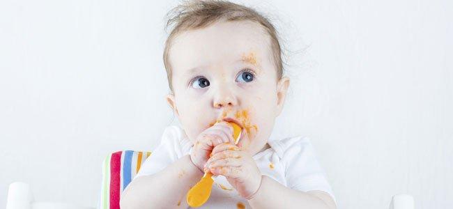 Bebé chupa cuchara