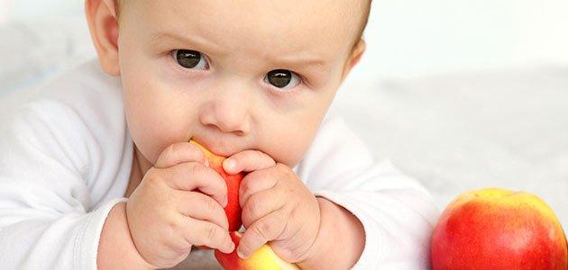 Bebé mastica fruta
