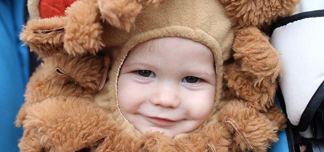 Bebé de león