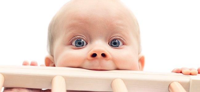 Los mordiscos de los bebés