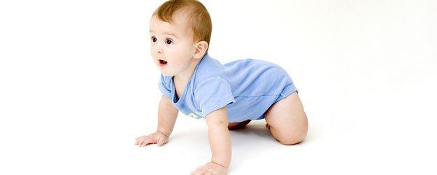 Gateo Del Bebé. Etapas Y Cuidados