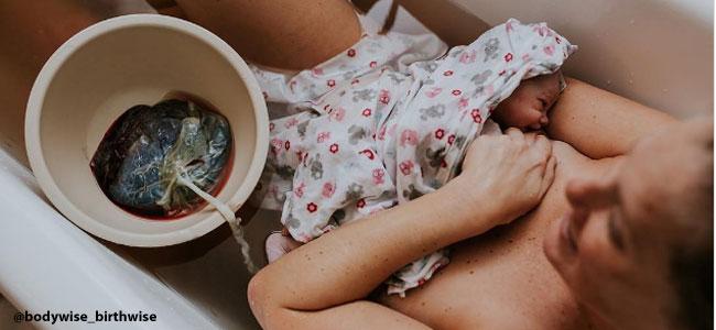 Nacimiento lotus