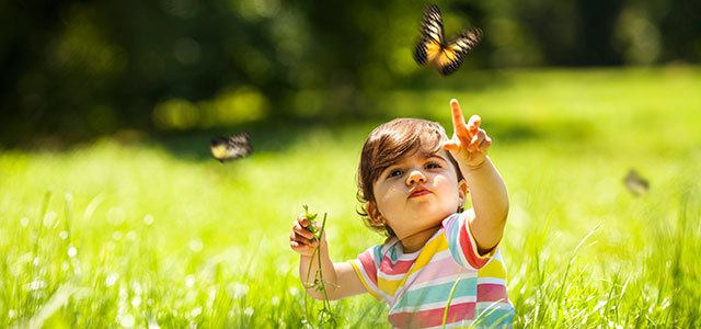 Niña atrapa mariposa