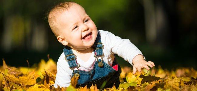 Bebé en campo de hojas