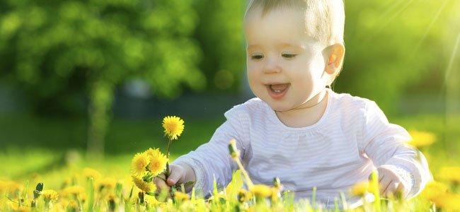 Bebé entre flores