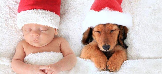 Bebé con gorro rojo duerme con perro