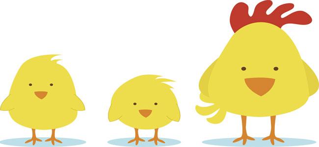 Los pollitos. Canción para jugar con el bebé