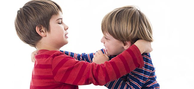 Las peleas de los niños. Cómo controlarlas y evitarlas