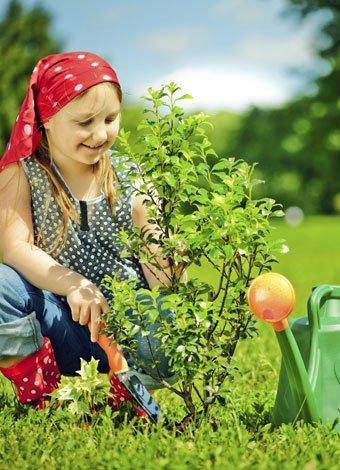 plantar un árbol con los niños