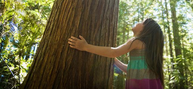 Rutinas para conservar el medio ambiente a los niños