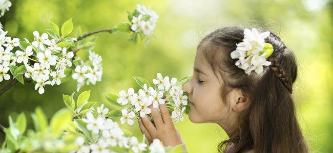 Niña huele flores