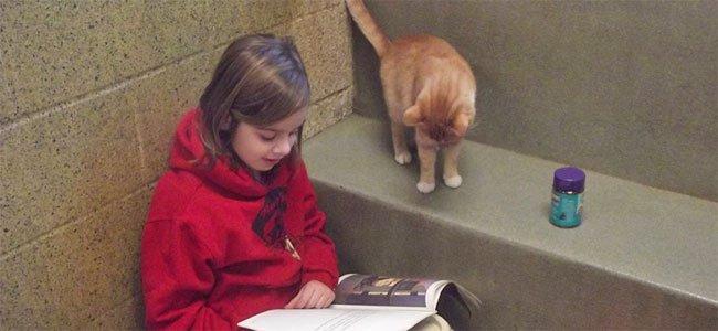 Los beneficios de leer en voz alta a los animales