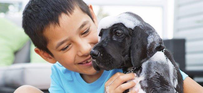 niña besando a un perrito