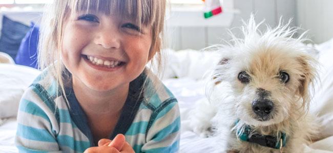 Enseñar al niño a cuidar de su mascota