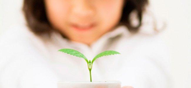Niña con planta en las manos