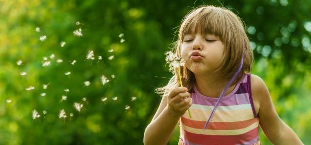 Cómo enseñar a los niños el ciclo de las plantas
