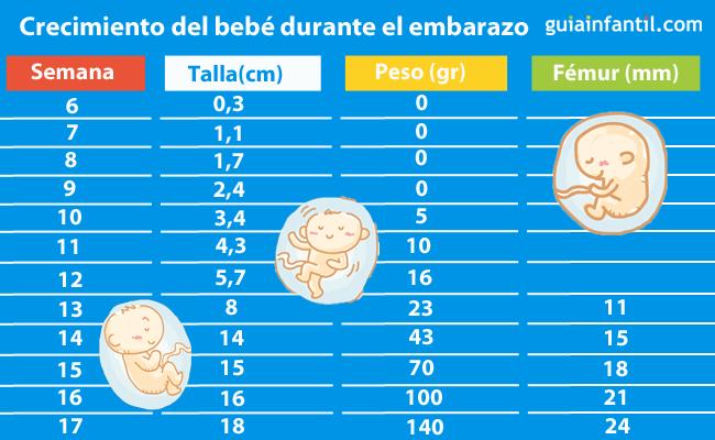 Tabla para saber cu nto mide y pesa el beb a lo largo del - Cuanto debe comer un bebe de 7 meses ...