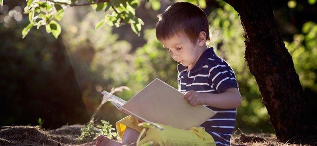 Niño lee debajo de un árbol