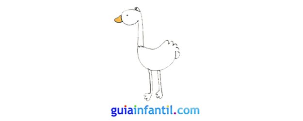 Cómo hacer, paso a paso, una avestruz.
