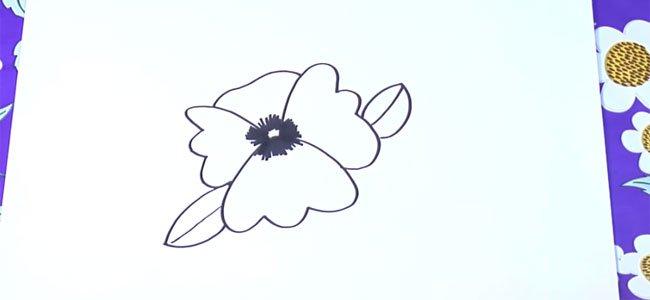 Dibujo de una violeta.