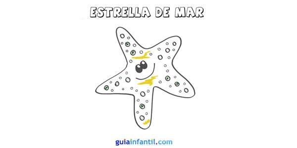 Dibujo estrella de mar.