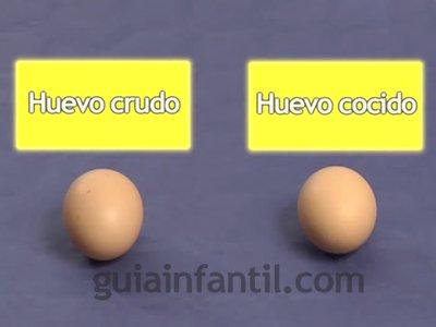 Diferenciar un huevo crudo de uno cocido. Paso 1