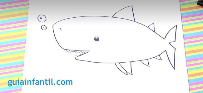 Dibujo de un tiburón. Paso 4.