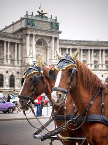 Moverse por Viena