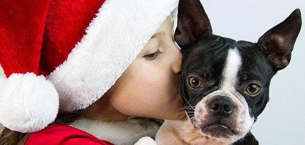 Niño besa a un perro