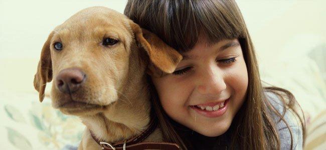 Niña abraza perro