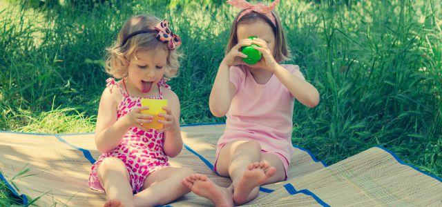 Un día de picnic con niños