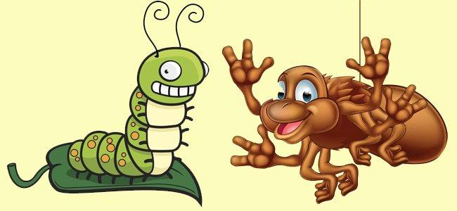El gusano de seda y la araña. Fábulas para niños