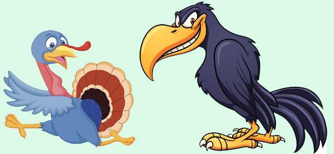 El pavo y el cuervo. Fábulas para niños.