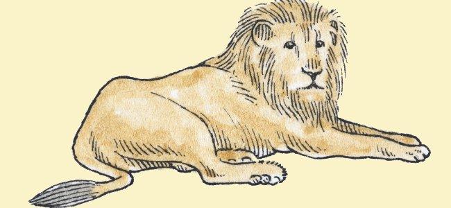 Fábula infantil: El león y la zorra
