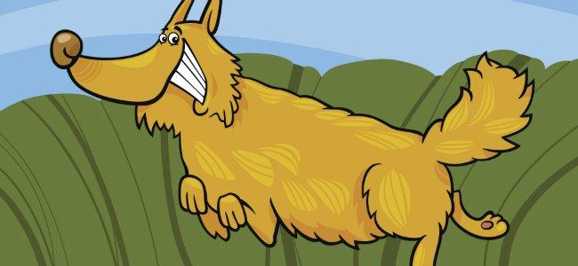 Cuento infantil del Perro y el establo