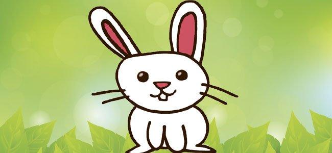 Cómo dibujar un conejo, paso a paso
