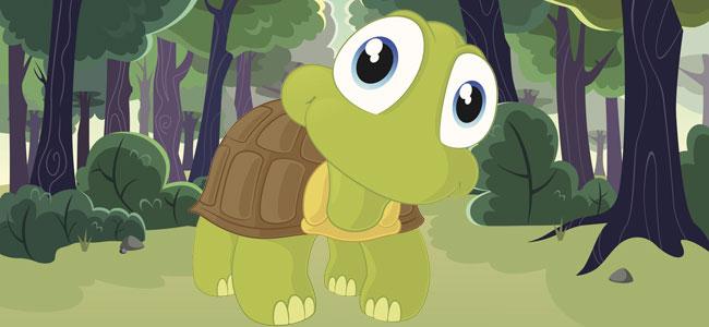 La tortuga que no sabía esperar. Cuento para niños con autismo