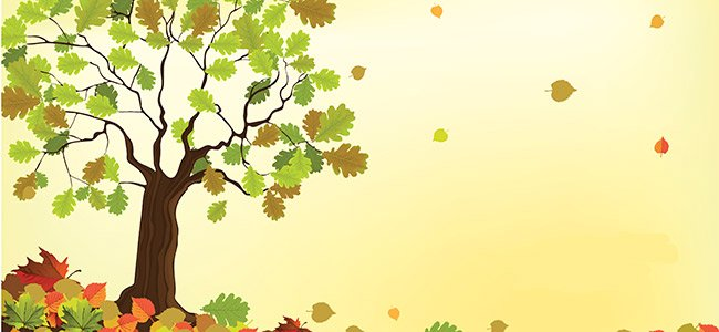 El árbol del otoño, cuento para niños