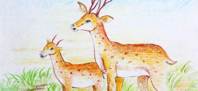 El cuento de Bambi para los niños