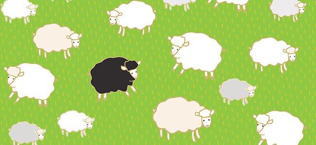 Black sheep, canción en inglés para niños