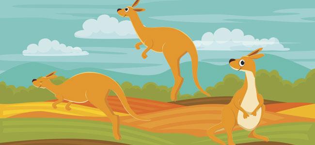 El canguro ganador. Fábula moderna para niños sobre jugar limpio