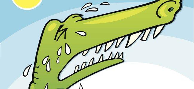 Resultado de imagen para cocodrilo gigante dibujo