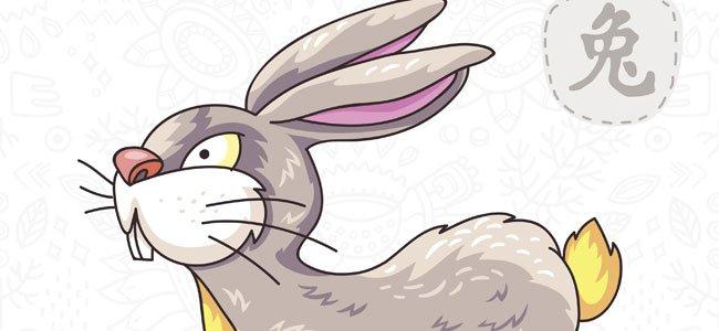 conejo signo chino