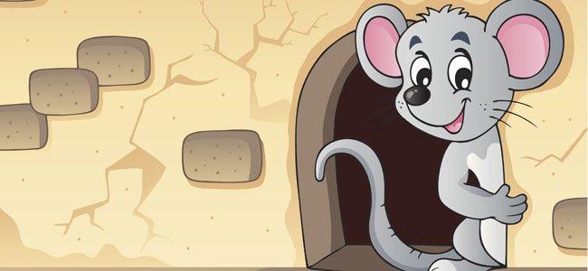Congreso de los ratones, fábulas cortas